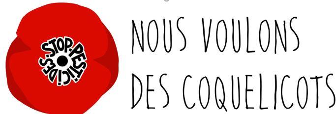 Coquelicot1