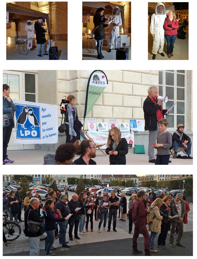 Quelques photos du 5 octobre et du 2 novembre, Place Foch à Saint-Omer